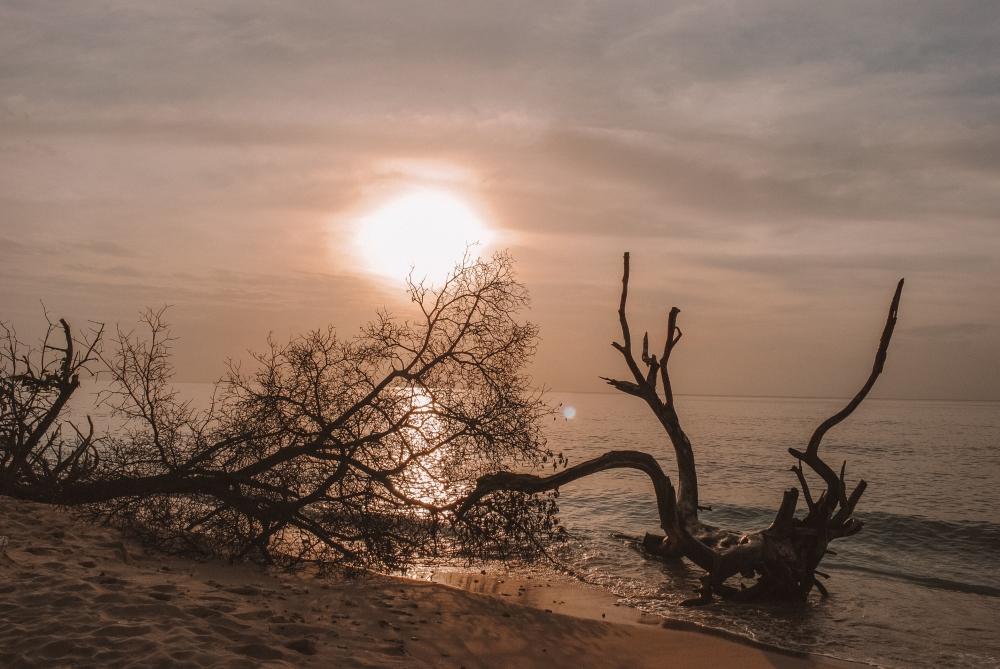 34 Polaroid Holetown Sunset